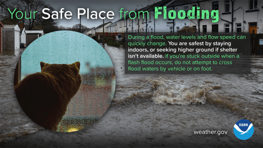 Your Safe Place from Flooding