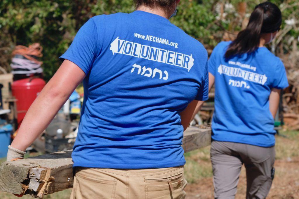 Now Accepting Volunteers in Detroit